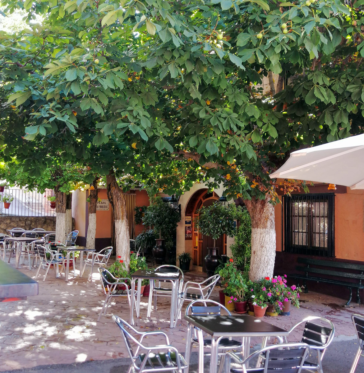Patio de las Moreras Terrace